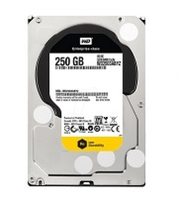 "Western_Digital ""HDD 250GB RE4 64mb cache SATA 6gb/s 7200RPM 3.5"""""""